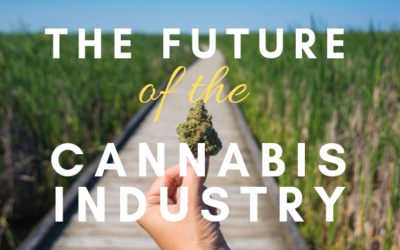 The Future of the Cannabis Industry